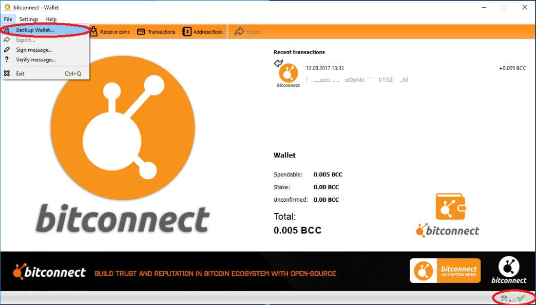 Обзор BitConnect (Битконект)