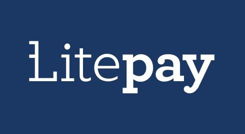 Litepay — новый процессинг для Litecoin с поддержкой дебетовых карт