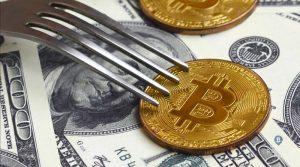 В АБА настаивают на создании «безопасной гавани» для хардфорков криптовалют