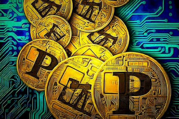 Власти Венесуэлы проведут аукцион Petro на платформе Dicom