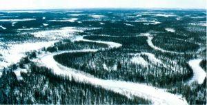 Сибирь привлекла мировых блокчейн-инвесторов