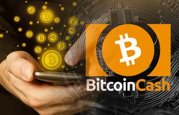 Более 940 интернет-магазинов уже принимают Bitcoin Cash
