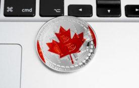 Из-за краха QuadrigaCX трейдер из Торонто потерял $75 тыс.