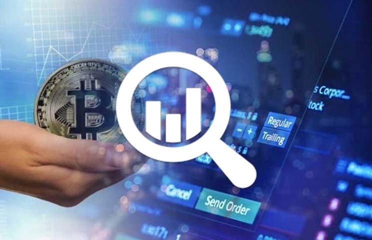 Whale Alert заявляет о разработке крупнейшего трекера блокчейнов