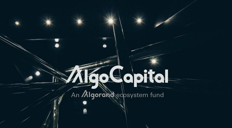Хакерам удалось выкрасть токенов почти на $2 млн. у Algo Capital