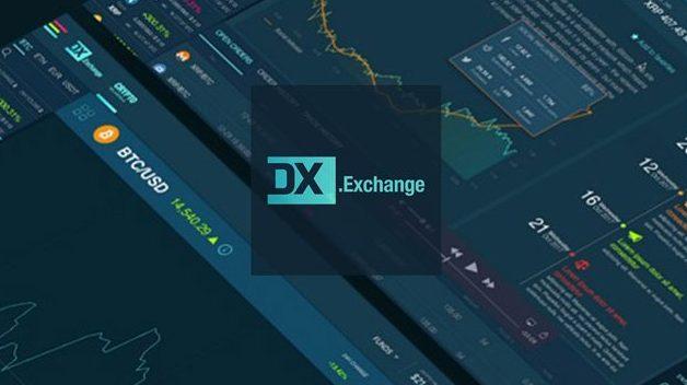 О банкротстве объявила компания, владелица биржи DX.Exchange