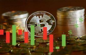 Стартап Raiz намерен предложить пользователям опционы на биткоины