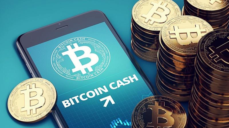 32,6% монет Bitcoin Cash остаются неподвижными
