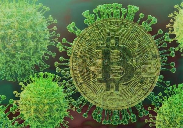 Вспышка коронавируса повысила популярность биткоина, - Алекс Светски