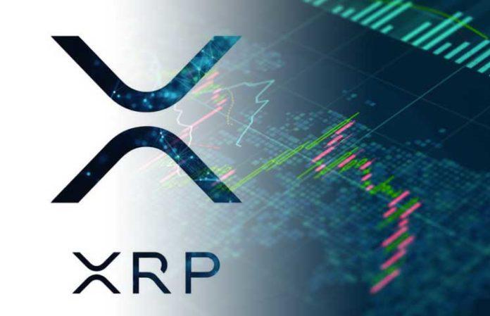 Держатели монет XRP глубоко в минусе, - мнение
