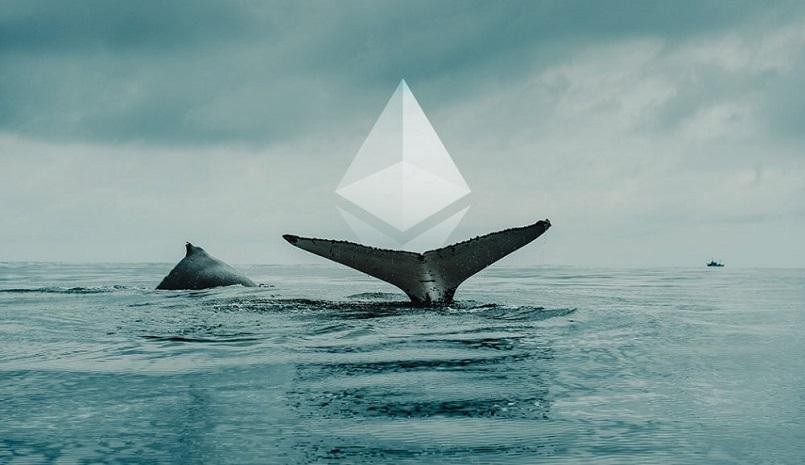 К Ethereum присоединилось 68 китов