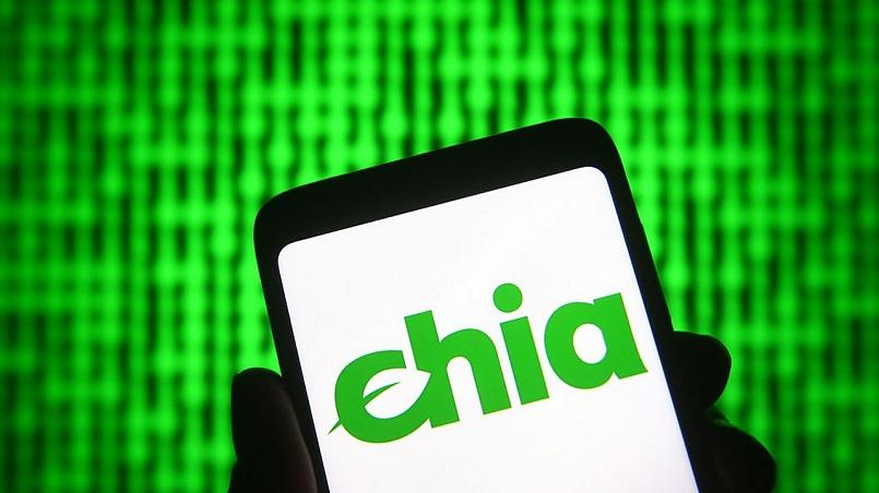 В Chia заявили об уязвимости пула Hpool