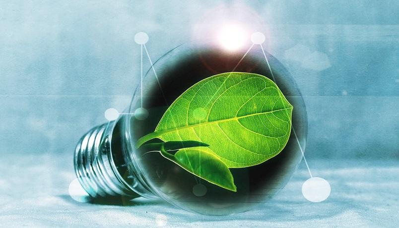 В Нью-Йорке призвали перевести майнинг на «зеленую энергию»